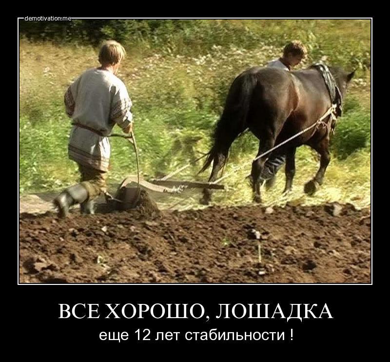 сколько времени занимает работа с одной лошадью грузинская, европейская